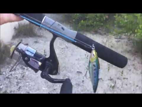 Top Secret Fishing Spots Revealed - North Naples
