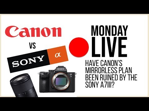 Did the Sony a7III Ruin Canon's Mirrorless Plans? & More | Monday Live