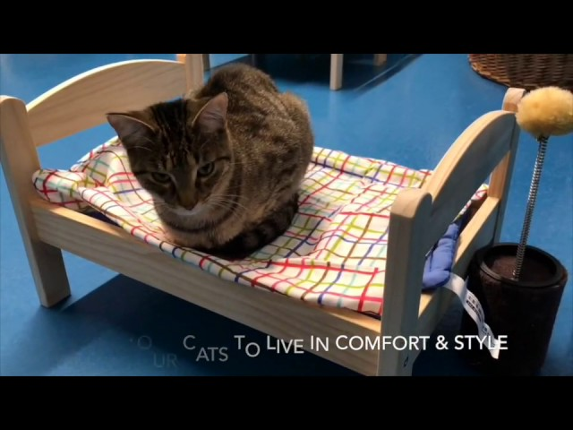Duktig Doll Beds – Thank you IKEA