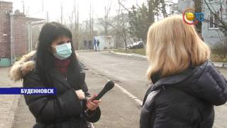 в сети Интернет продолжают распространяться слухи об эпидемии свиного гриппа