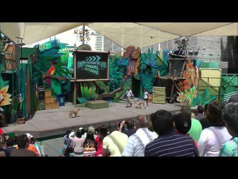 Universal's Animal Actors, Universal Studios Hollywood