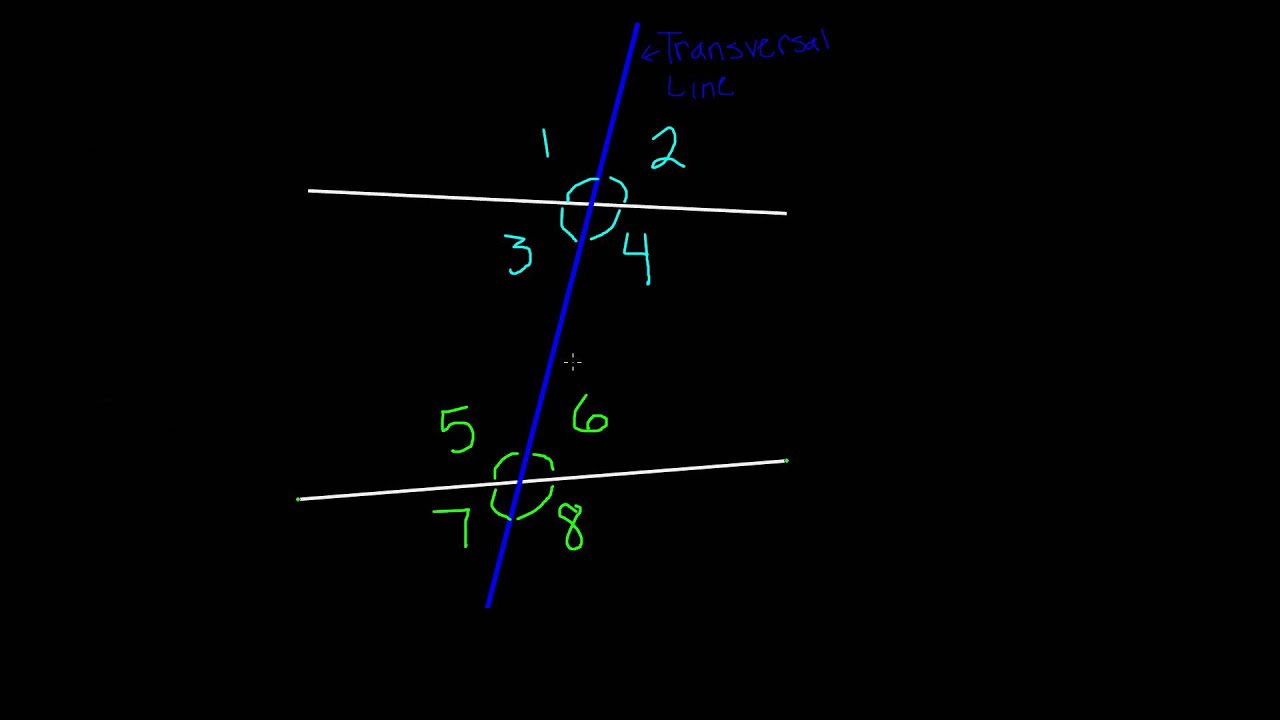 Alternate Interior Angles 7th Grade Math