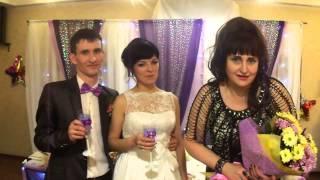 Отзыв о моей работе на свадьбе 17.01.15 г. Омск!!! Надежда 8-908-800-9237