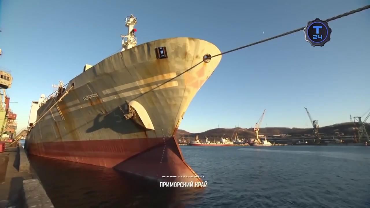 Охлажденную рыбу на Мурманский берег - YouTube