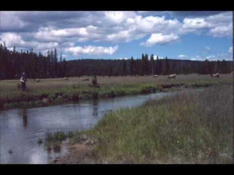 Gibbon River - Yellowstone National Park.wmv
