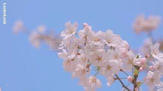 [나의계절] 건강한 몸과 마음으로 채우는 봄 | 락앤락