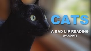 "[PARODY] ""CATS"" - A Bad Lip Reading"