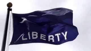 Moultrie Flag 1775  [3/18]