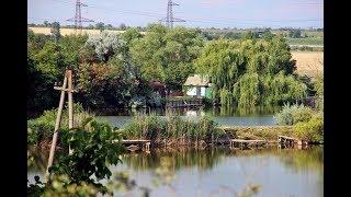 Рыбалка в Мирном. Лето. Отдых. Красота. Карп. Карась. Рыбалка в Одесской области. Водоём. Червь. БАМ