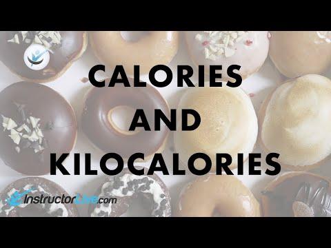 Calories and Kilocalories