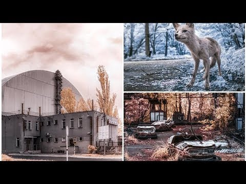 Incredible infrared photos lay bare radiation-ravaged Chernobyl wasteland 31 years after nuclear ex