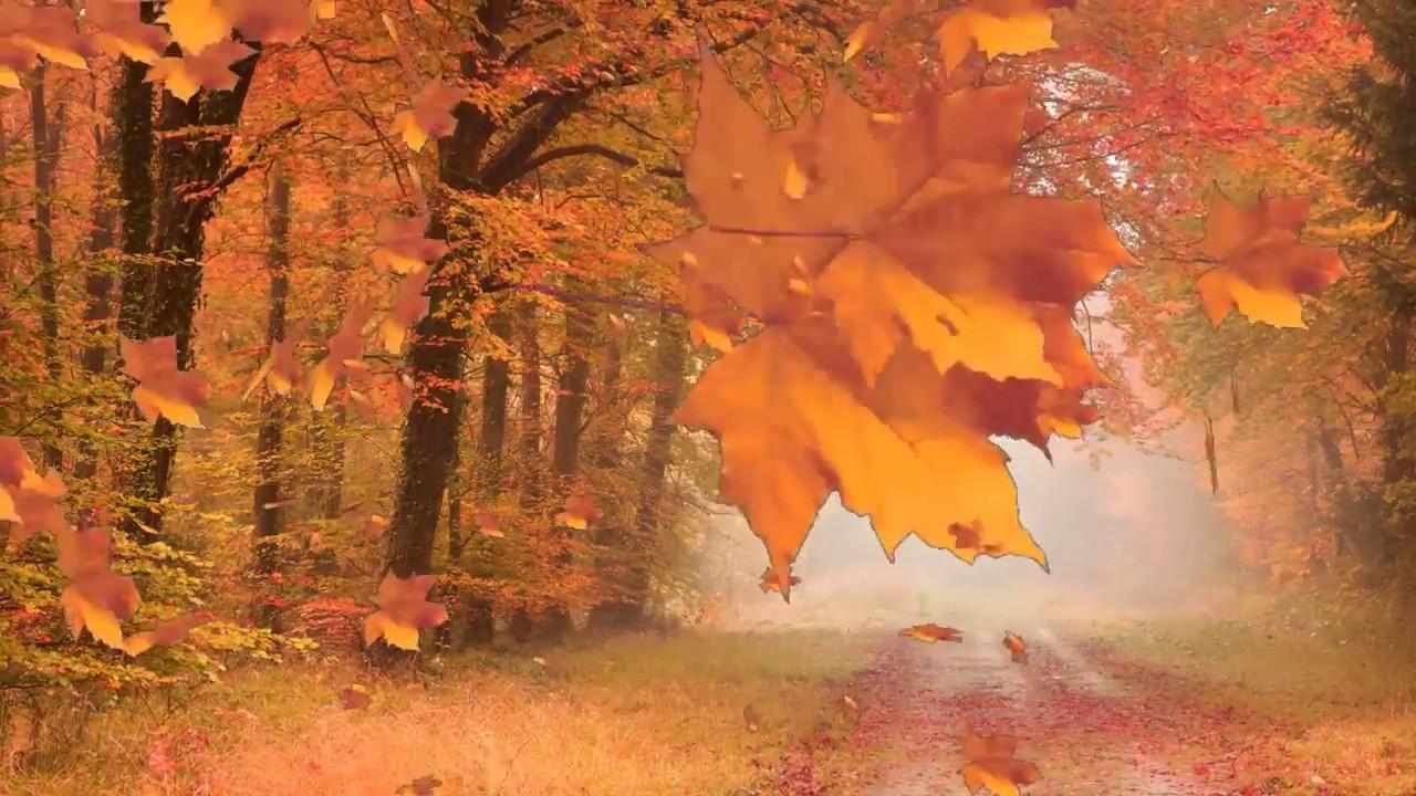 Abstract Background | Autumn Mood