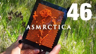 ASMR Outdoors | 3D Imprints of the Forest | Rambling + Calming Nature