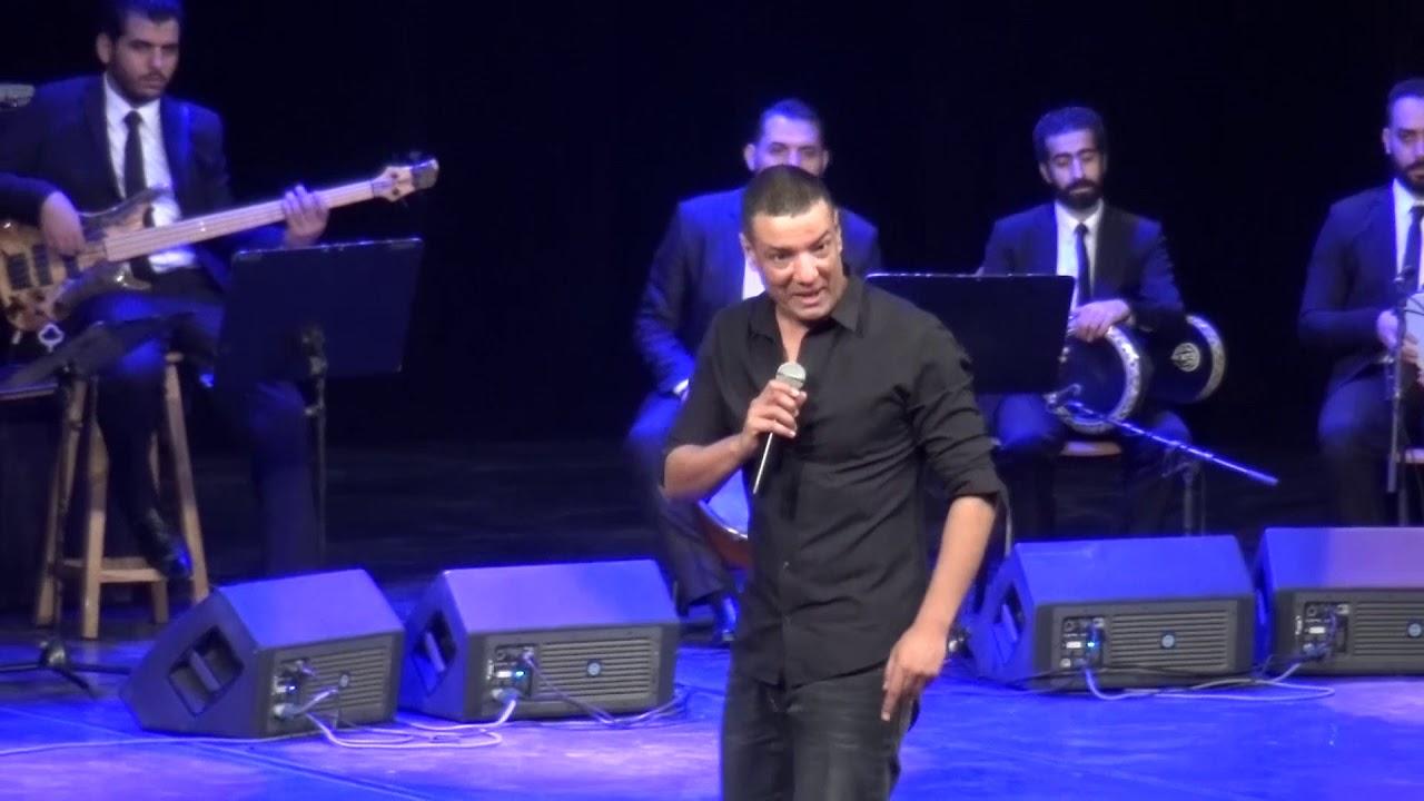 Hisham Elgakh - غفير القصر image