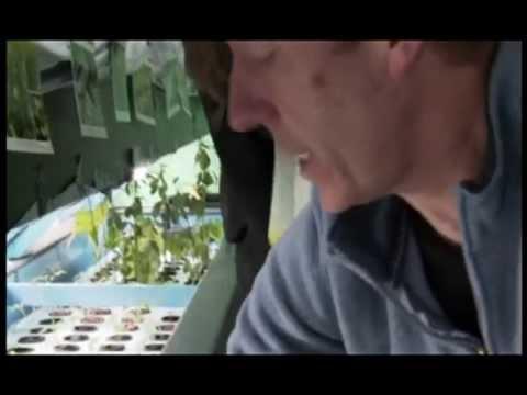 Vidéo Doublage France 5 (VoiceOver)