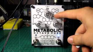 Reaper Pedals Metabolic Octave Fuzz Demo