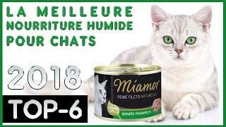 La Meilleure 🔥 Nourriture Humide Pour Chats 😸 TOP-6 🔥