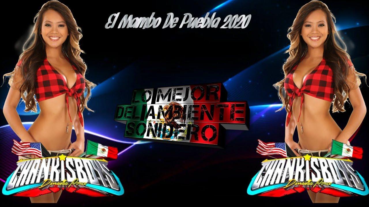 EL MAMBO DE PUEBLA - (ESTRENO) - CUMBIA LIMPIA  2020 WEPA EXITO  SONIDO CHANKISBOYS HQ