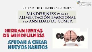 Mindfulness para la Alimentacion Emocional y la Ansiedad de Comer