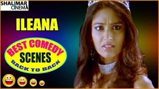 Ileana Best Comedy Scenes Back To Back || Latest Telugu Comedy Scenes || Shalimarcinema
