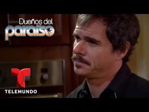 Dueños del Paraíso  Entrevista: Tony Dalton es Renato Maldonado  Telemundo Novelas