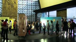 AOS OLHOS DE CAYMMI - Exposição de Canções Ilustradas :: São Paulo