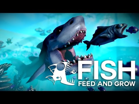 Fish Feed and Grow | Max in Lumea pestilor