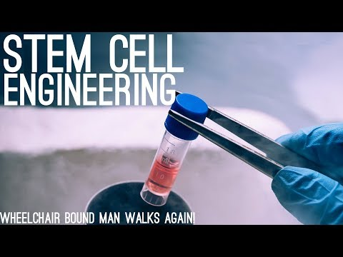 Wheelchair-bound Man Walks Again After Stem Cell Injections!