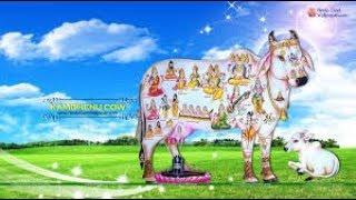 SAVE THE COW AryaA Feat. Sudheer Dubey (SPOKEN WORD)