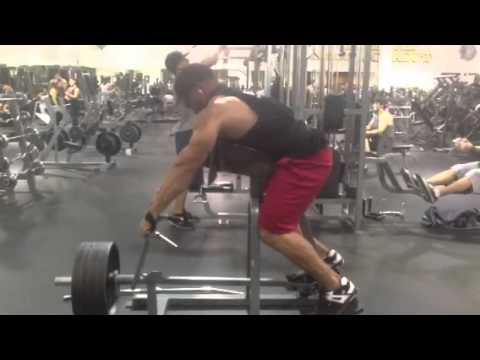 how to build back muscle mass