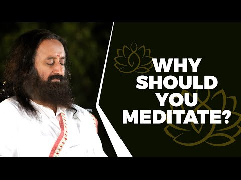 why-you-should-meditate-daily!-(what-even-google-cannot-answer)