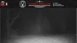 Cajun's Live Deer Cam Stream on SATURDAY, January 20, 2018 ... thumbnail