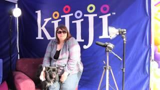 Pomeranian American Eskimo, Wifi - June 8, 2013