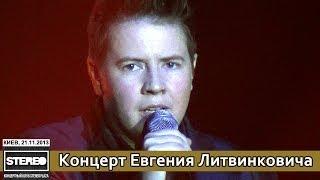 Евгений Литвинкович. Концерт в рамках первого гастрольного тура. Stereo Plaza. Киев, 21.11.2013.
