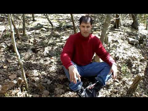 How To Hunt Morel Mushrooms In Texas