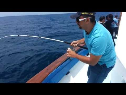 Fishing NEWPORT LANDING Sportfishing Boats Video