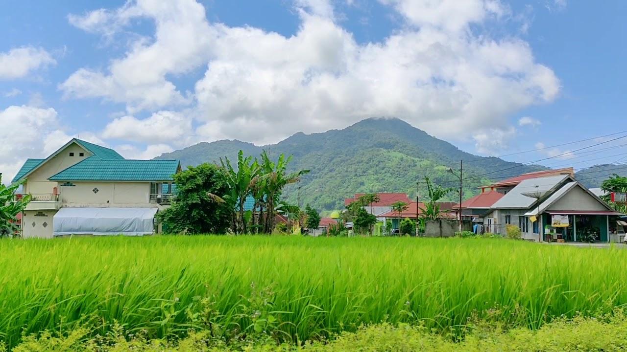 Background Pemandangan Sawah Dan Gunung, Awan Bergerak - YouTube