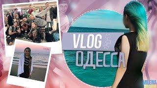 VLOG: Одесса, Рейтинги, Купаемся с Янго и Афоней