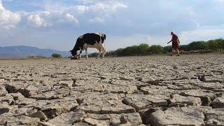 [Latinofiesta] La leche y el agua Trailer