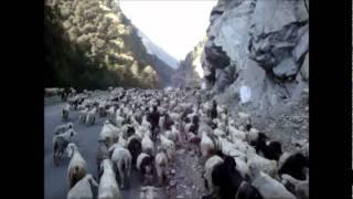 インドの面白い動画です。 インドのヒマラヤ近くの村ををバスで訪れる途...