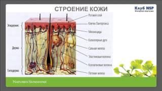 Косметология, Красивая кожа – здоровая кожа