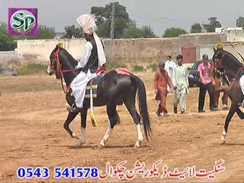 TENTPEGGING CHAKSHAZAD ISLAMABAD 2013 PART 1