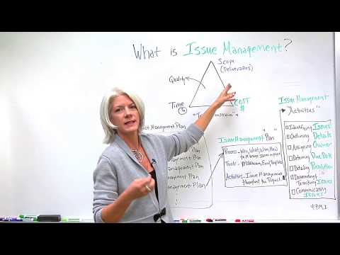 What is Issue Management?