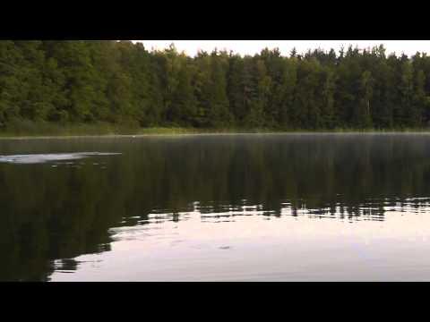 рыбалка на реке сороть псковская область