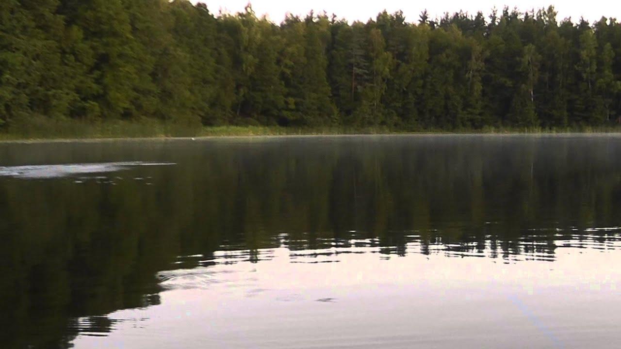 красногвардейское озеро рыбалка