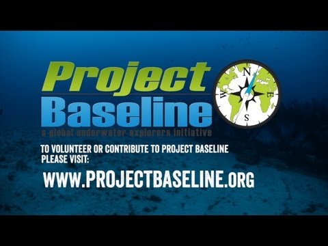 What Is Project Baseline?