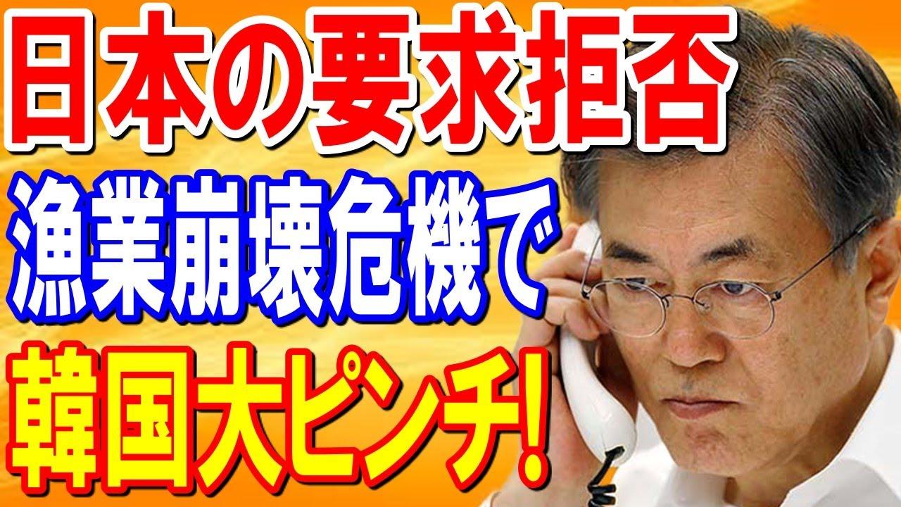 【海外の反応】「もう取返しはつかない…」日本の要求を飲めず意地を張った韓国がとんでもない事態にwww【日本の魂】