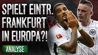 Kommt die SGE in die Europa League?!   Analyse