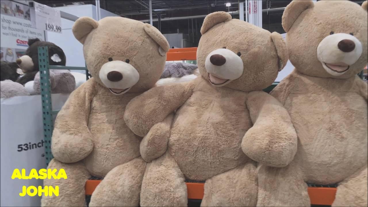 World S Largest Teddy Bear Alaska Costco Store 199 99