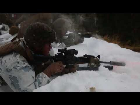 DFN: Winter Warfare Training: Live fire squad attack, HALTDALEN TRAINING CENTER, NORWAY, 04.18.2018